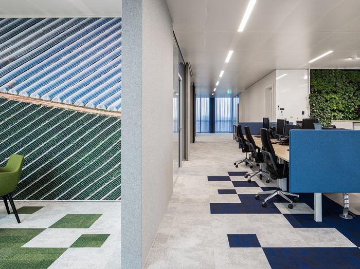 绿色食品公司办公室吸音墙装修设计效果图